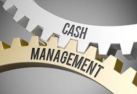 What are the Key Challenges in Cash Management?