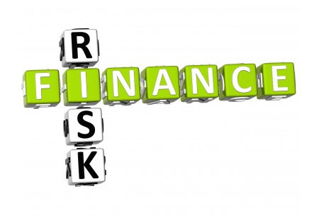 Financial Risk Management by IFAC and ERM.